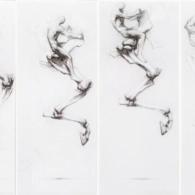 El salt. Políptic